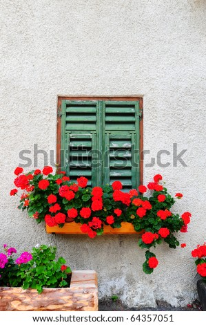 Typical Italian Window With Closed Wooden Shutters, Decorated With Fresh Flowers