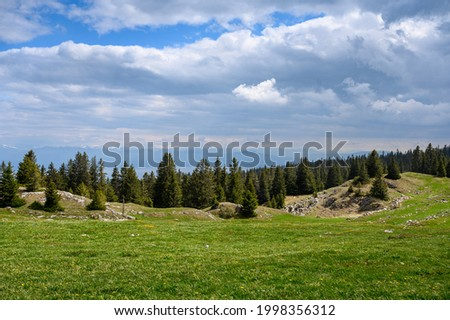 typical landscape in the swiss jura with a meadow and forest near Mont Tendre Photo stock ©