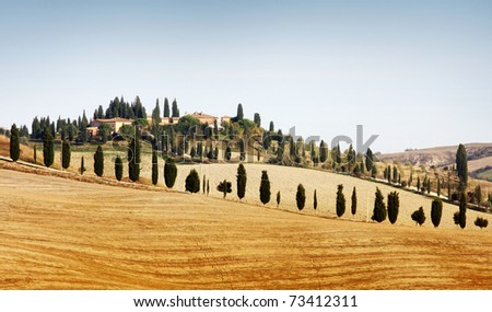Typical landscape in Tuscany in Autumn