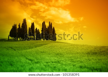 Typical landscape in Tuscany, Italy