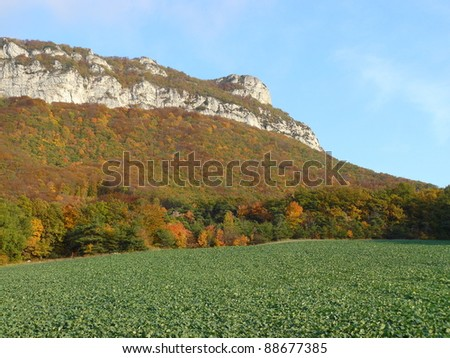 Typical landscape of south of France, Rochecolombe, Drome, Rhone, Alps