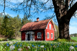 Typical red wooden house in Sweden