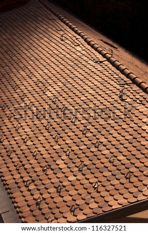 Typical Roof of Mountain - Trento Italy / Detail of typical roof with metallic snow guard in Trento - Italy