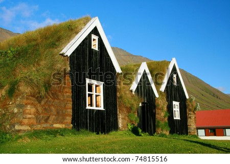 typical scandinavian house with grass on the roof