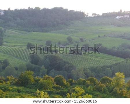Typical Tuscany landscapes, Tuscany, Italy #1526668016