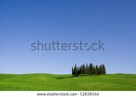 Typical Tuscany (Val d' Orcia) landscape with blue sky, rolled hills and many cypress.
