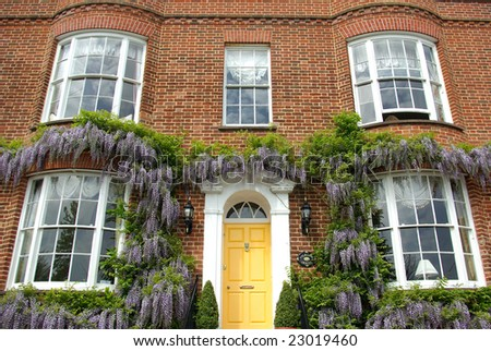 Typical Victorian style house frontage with wisteria growing on it