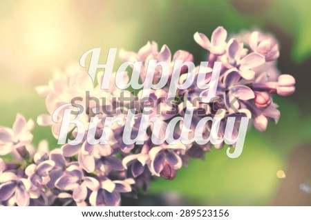 Typography happy birthday card. Picture with the inscription Happy Birthday. Lilac flowers in the background. Vintage poster with text