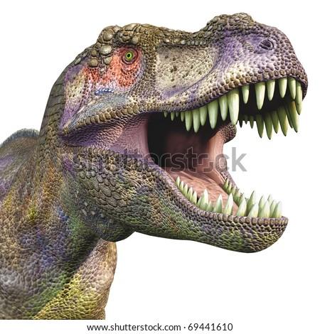 tyrannosaurus huge head