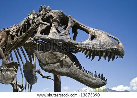 Tyrannosaurus Rex - stock photo
