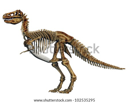 Tyrannosaurus Rex Skeleton Computer generated 3D illustration