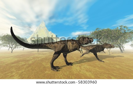 TYRANNOSAURUS REX - Two Tyrannosaurus Rex dinosaurs are on the hunt for prey.