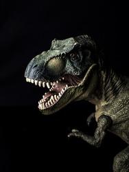 Tyrannosaurus T-rex dinosaur on black  background  .