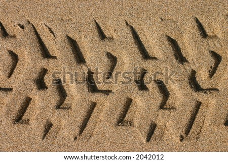 Tyre track of a lifeguard beach buggy in sand