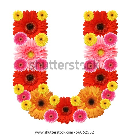 U, flower alphabet isolated on white