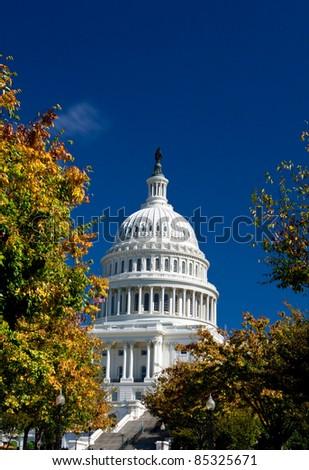 U.S. Capital dome building in the fall. Washington DC