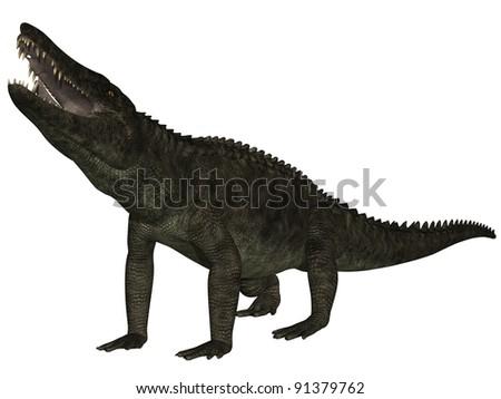 Uberabasuchus terrificus- 3D Dinosaur