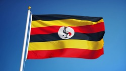 Uganda flag waving against clean blue sky, close up, isolated with clipping path mask alpha channel transparency