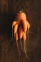 Ugly carrot on a wooden background. Funny, unnormal vegetable or food waste concept. Vertical orientation top view