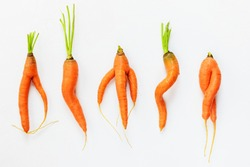 Ugly carrots on a white background. Ugly food concept, top view.
