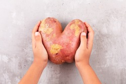 Ugly potato in the heart shape on a gray background. Funny, unnormal vegetable or food waste concept. Horizontal orientation