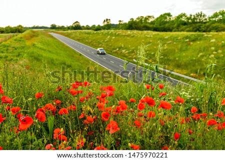 uk motorway road with poppies in foreground view at daylight #1475970221