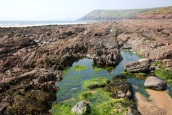 UK, Wales, Pembrokeshire, Manorbier, rockpools on the beach