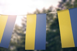 Ukraine flag pennants