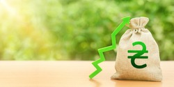 Ukrainian hryvnia money bag and green arrow up. Deposit interest rate rise. Economy accelerator performance. Strengthening Revaluation of national currency, investment attractiveness. Economic growth