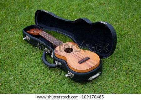 Ukulele and Bag on lawn background