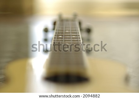 ukulele guitar fret board detail