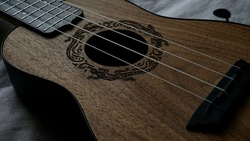 ukulele musical instrument with iguana engraving