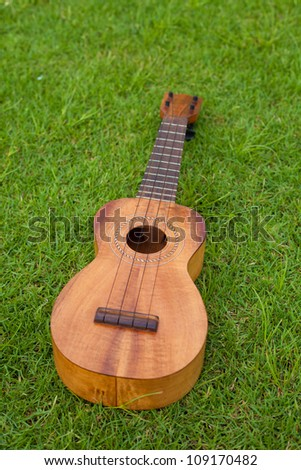 Ukulele on lawn background