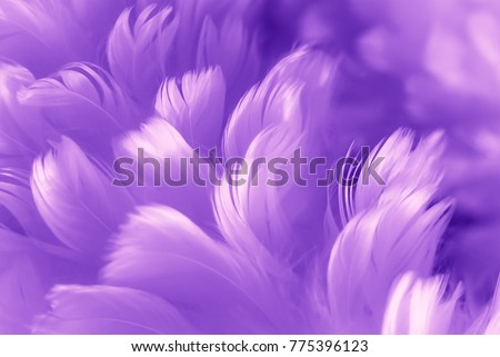 Ultra Violet feathers closeup - Color of the year 2018. Abstract pastel purple soft fluffy texture background - Fashion Colour Trends on design wallpapers.