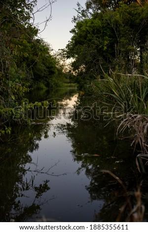 Um corrego de águas tranquilas geram um efeito de espelho d'agua no fim de tarde no campo. Stock photo ©