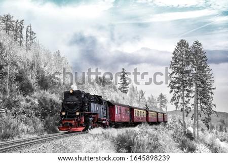 Uma bela locomotiva viajando em seus trilhos entre a natureza em um belo dia com nevoeiro. Foto stock ©