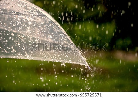 Umbrella in the rain in green nature background #655725571