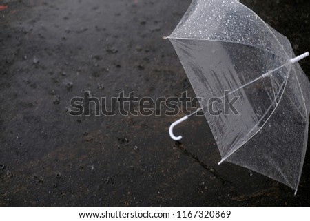 Umbrella in the rain, umbrella and rain drops closeup, view behind umbrella in rain drop, raining day, water, sunlight #1167320869