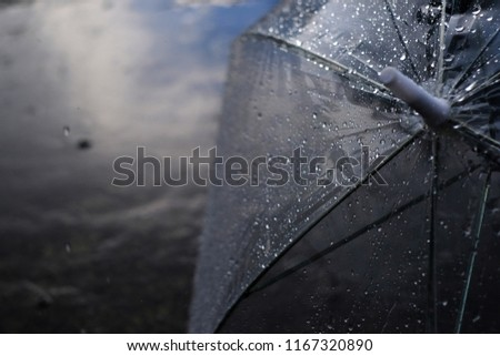 Umbrella in the rain, umbrella and rain drops closeup, view behind umbrella in rain drop, raining day, water, sunlight #1167320890