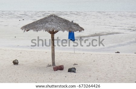 umbrella on the beach #673264426
