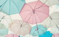 Umbrella pattern with pastel color tone