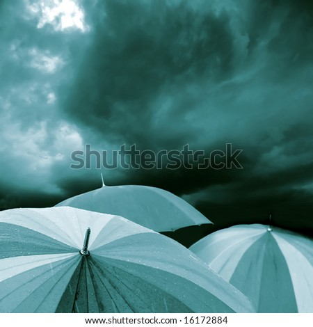 Umbrella's in heavy rain in black and white with blue tone