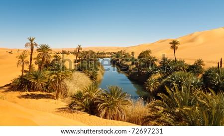 Umm al-Ma Lake - Idyllic oasis in the Awbari Sand Sea, Sahara Desert, Libya Stok fotoğraf ©