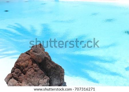 Shutterstock Un elemento de la naturaleza robusta en una escena de naturaleza suave, Agua trasparente y sol veraniego.