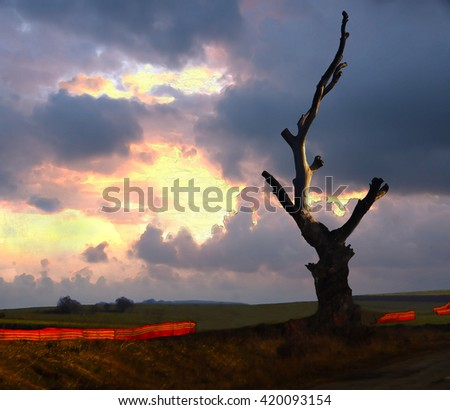 Unconventional composition in watercolor (no rule of thirds) of roadside tree trunk on cloudy and pink-yellow sun light background