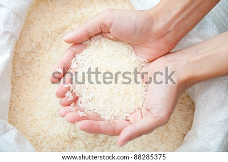uncooked white rice on hand