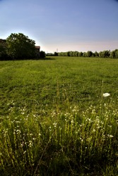 Uncultivated field next to a country house at sunset in summer