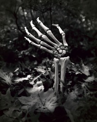 undead skeletal arm coming out of the ground