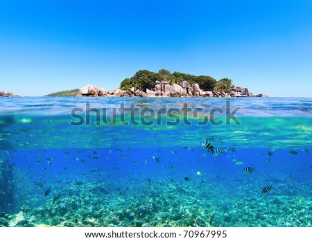Under and above water photo of small island in Seychelles