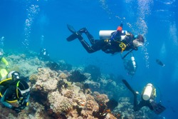 under-sea maldives, group of hardy scubadivers explores a coral reef